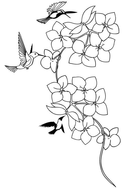 Hummingbird Drawing Tattoo at GetDrawings | Free download
