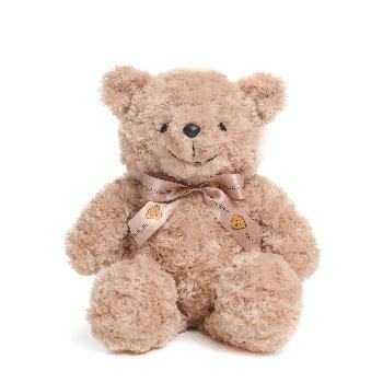 Teddy House - teddy house
