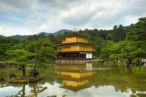 Japan Tour  Halal   Osaka  Kyoto  Nara And Tokyo