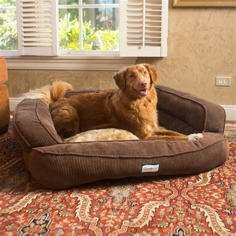 Extra Large Dog Sofa Bed Dog Sofa Bed Couch Extra Large