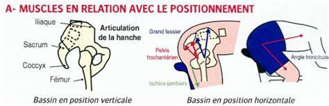 douleur sacrum position assise actualit 233 endofibrose club cyclisme u s maule cyclisme clubeo