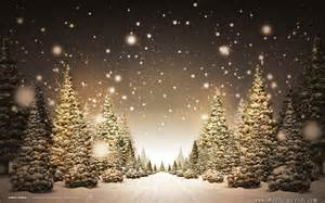 9 Pre Lit Pencil Christmas Tree by Winter Snow Christmas Trees Landscape Wallpapers Free