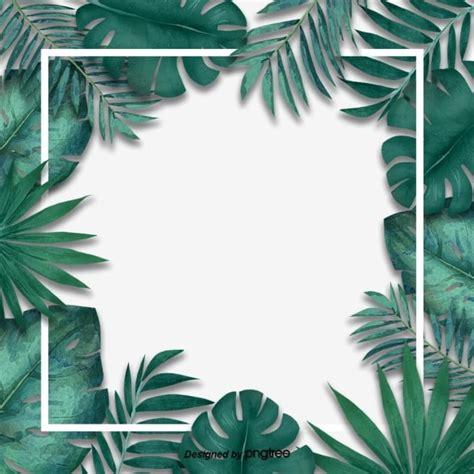 simple fresh tropical palm leaf border originality leaf