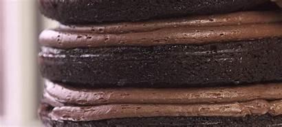 Chocolate Cake Decadent Unfair Seeing Stress Siren