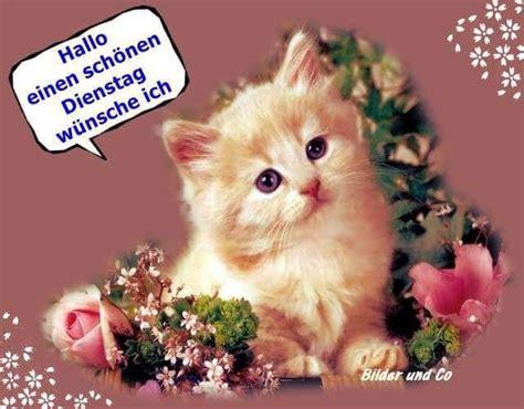 dienstag sprueche lustig bilder fuer whatsapp gb pics