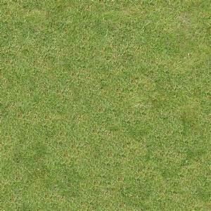 Grass Textures 029 by Quartor   3DOcean