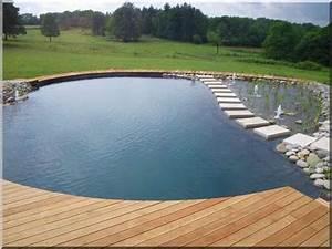 Filtration Biologique Pour Bassin A Poisson : bassins de baignade piscine biologique cr er cr ation de ~ Premium-room.com Idées de Décoration