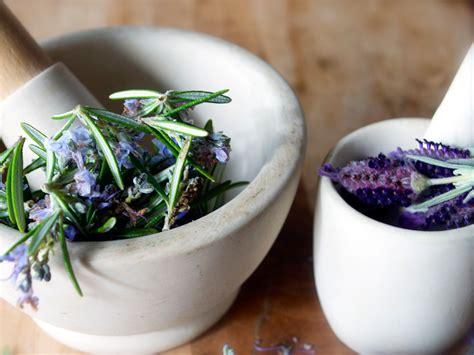 lavender drweilcom