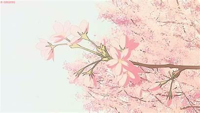 Aesthetic Anime Blossom Flower Villains Gifs Cherry