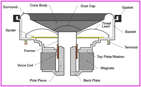 Speaker Part Diagram by 10 Reasons To Upgrade Your Speakers Black Volt