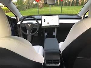Tesla Model 3 Standard Interior Options Leaked - Rumors - Elon Musk
