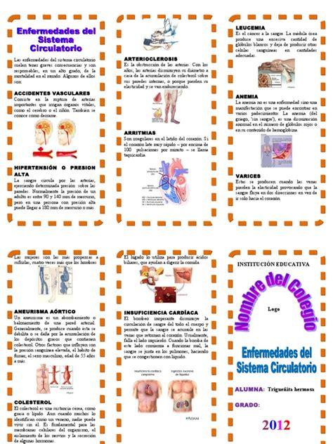 triptico enfermedades del sistema circulatorio heart