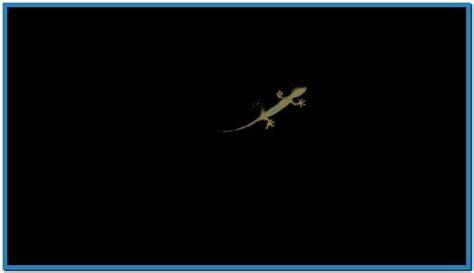 Screensaver audi gecko - Download free