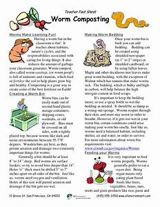 Teacher Worm Composting Guide