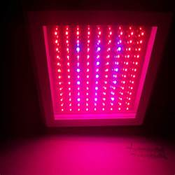 how to buy the best led grow lights for your houseplant knowing more about led grow lights