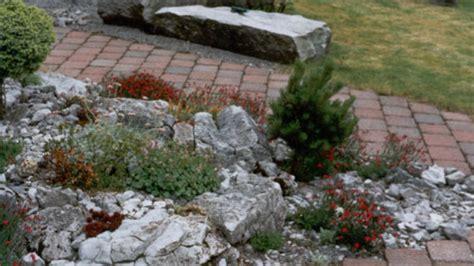 Steingarten  Alpinum  Thomas Diethelm Gartenbau Und