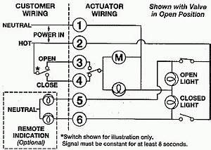 actuator limit switch wiring diagram 12 and 24 volt wiring With electric linear actuator wiring diagram