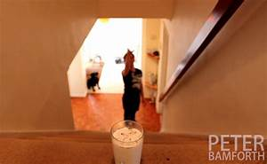 This Guy's Oreo Trick Shots Should Earn Him An NBA Contract