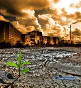 Environmental Environment Pollution