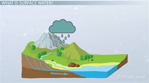 Psychology Career Diagram Of Sphere by Surface Water Definition Properties Lesson