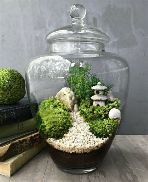 closed terrarium 137 best images about terrariums open and closed on pinterest terrarium ideas air plant