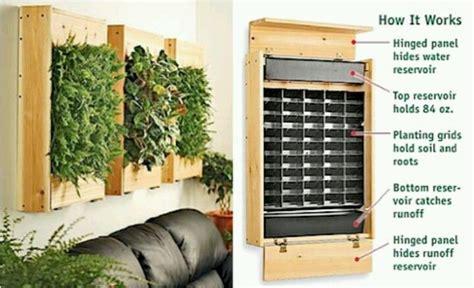 indoor herb wall gardening