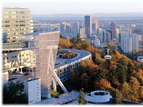 ohsu hit   power outage patient care  affected