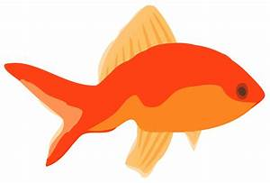 Early Learning Resources Goldfish