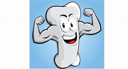 Bones Strong Calcium Stronger Bone Build Foods