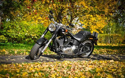 Harley Davidson Boy Wallpapers by Free Harley Davidson Wallpapers Wallpaper Cave