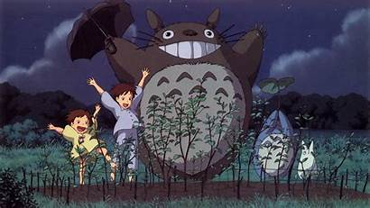 Totoro Voisin Mon Manga Ghibli Studio