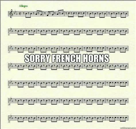 French Horn Memes - 25 best ideas about french horn on pinterest band puns busted band and band jokes