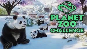 Wer Baut Garagentorantrieb Ein : wer baut das beste panda gehege planet zoo challenge ~ Watch28wear.com Haus und Dekorationen
