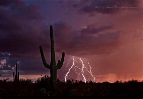 friday fotos flashback arizonas magnificent monsoon