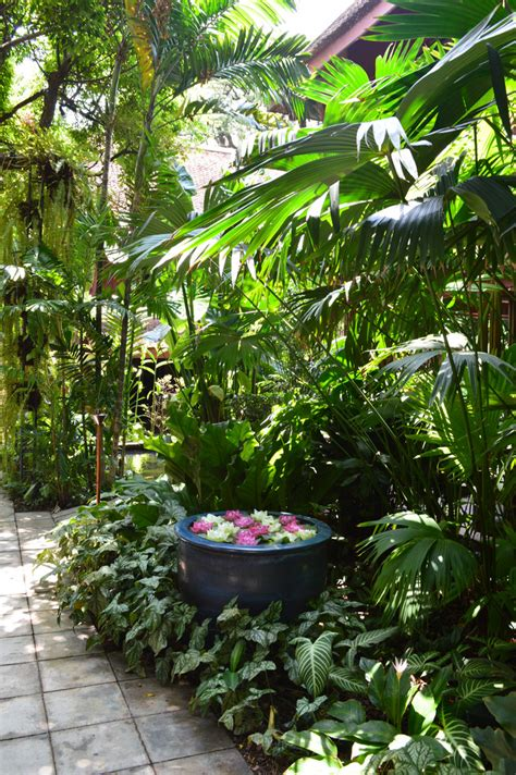 jim gardening jim thomsons house and garden bangkok thailand jim thoms flickr