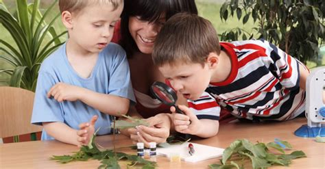 discover and learn preschool how to set up your preschool nature and science learning 316