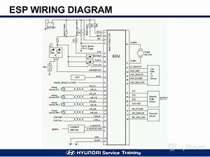 Esp Wiring Diagrams   19 Wiring Diagram Images