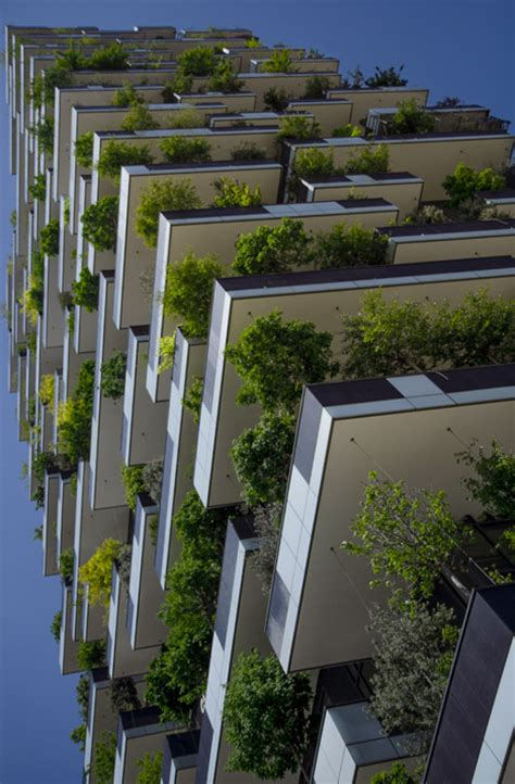 forested facades  buildings bringing greenery