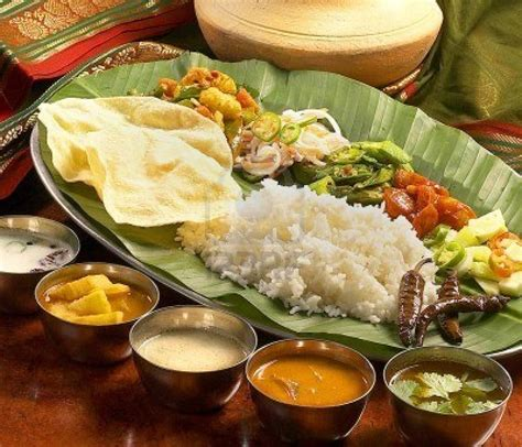 food cuisine indian cuisine food darbaar