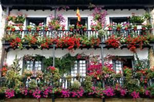 balkon twined mit blumen von petunien stockfoto bild von With markise balkon mit tapete bunt blumen