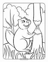 Beaver Coloring Printable Whatsapp Tweet Email sketch template