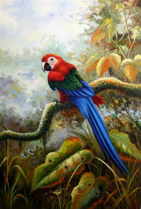17 Best Images About Parrots On Pinterest  Tropical Art