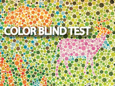 color blind test for kids with animals www imgkid com