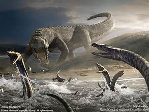 Sea Monsters Fantasy Creatures Wallpaper Image 1600x1200PX ...