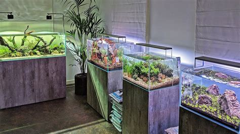 Aquascape Store by Beautiful New Aquascaping Store