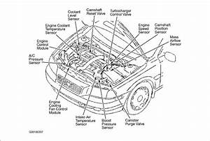 I Need Direction And Diagrams To Connect Vacuum  Air  Fuel