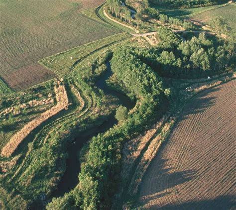 farmers   climate change riparian forest
