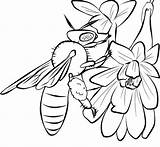 Bee Coloring Pages Honey Printable Bees Template Cute Print Drawing Templates Cliparts Drawings Flowers Comments Popular Coloringhome sketch template