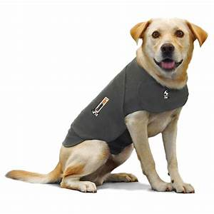 buy thundershirt for dog anxiety treatment for With dog training aids