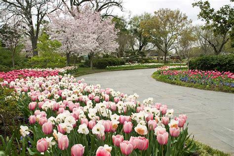 Dallas Garden by Dallas Arboretum Ranked Second Best Garden In The World